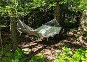 hammock hanging in the woods
