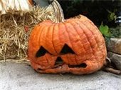 photo of rotten carved pumpkin