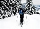 wild about lebanon text with person x-country skiing