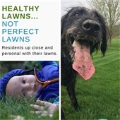 photos of a baby and dog on green lawn
