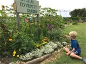 photo of child looking at flowers in Canillas Community Garden