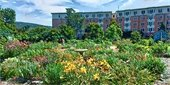 photo of Emerson Place from Canillas Community Garden