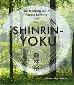 Shinrin Yoku forest image