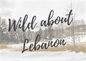 photo of snowy field with Wild about Lebanon text