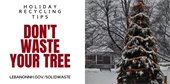 photo of Colburn Park Holiday Tree with message Don't Waste Your Tree