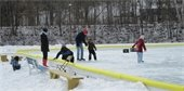 adults and children skating on ice rink