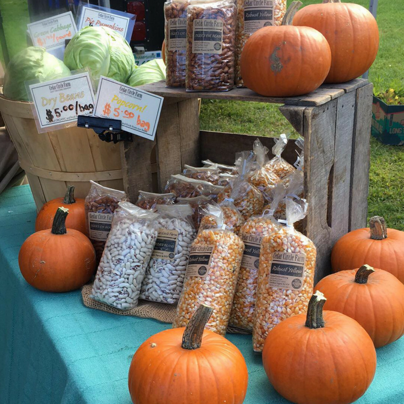 Photo of pumpkins, popcorn, and beans for sale at Lebanon Farmers' Market