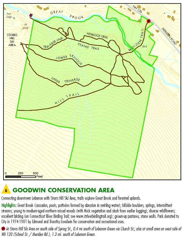 Goodwin Conservation Area Map