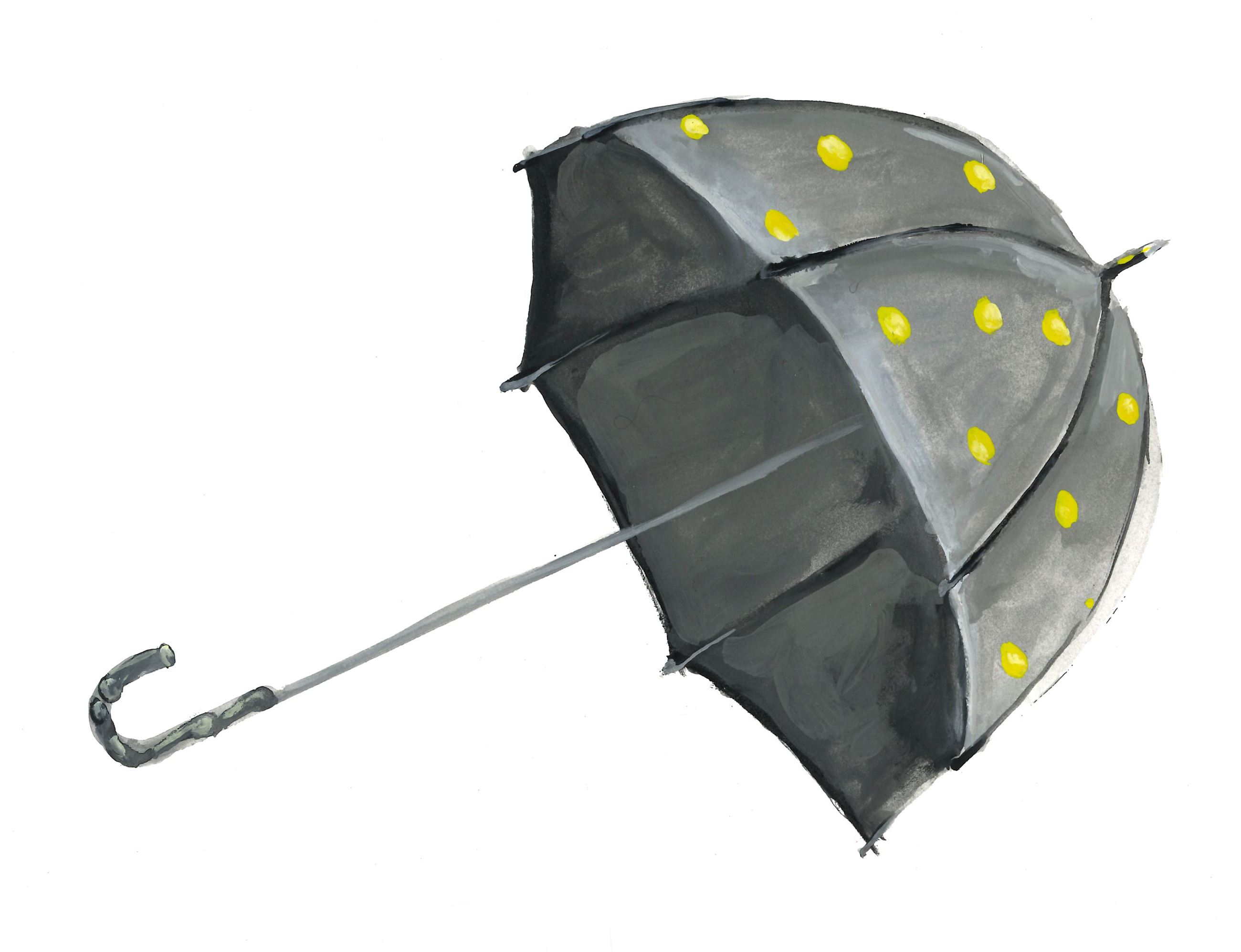 Steel Umbrella by artists Justin O'Rourke & Margaret Jacobs