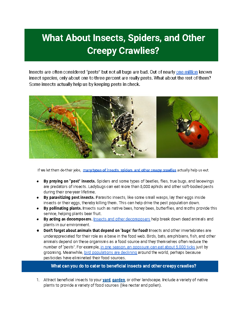 screenshot of insect article in pdf format