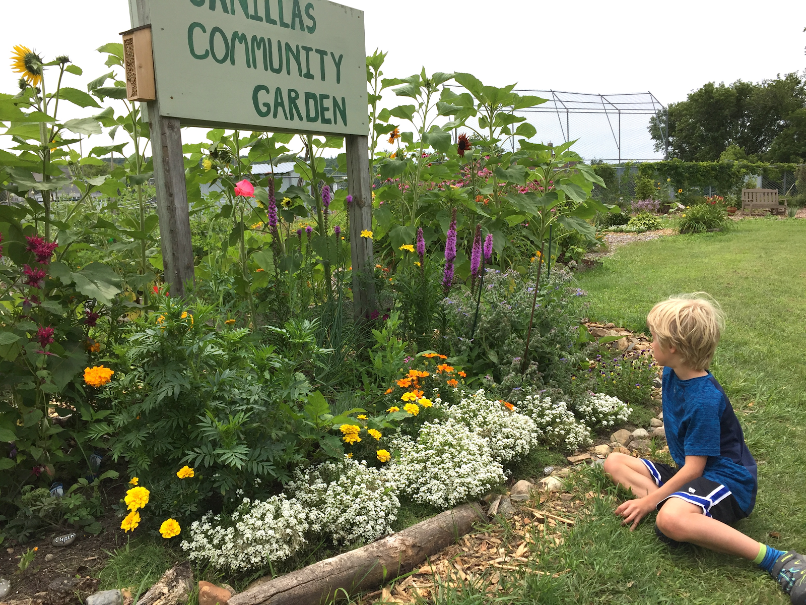Child sitting in front of flowers at Canillas Community Garden