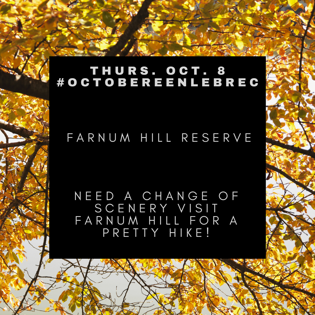 October 8 - Fall Hike Farnum Hill Reserve. Opens in new window